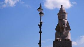 sphinx St Petersburg Contre le ciel avec des nuages banque de vidéos