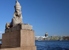 Sphinx at the Universitetskaya Embankment, Saint Petersburg, Russia Royalty Free Stock Images