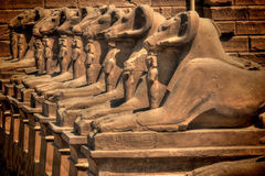 Sphinxes avenue at Karnak Temple (Luxor, Egypt) Stock Photo