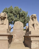 Sphinxes at Karnak temple in Luxor Stock Images