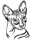Sphynx猫传染媒介例证装饰画象  皇族释放例证