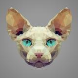 Sphynx猫低多画象 免版税图库摄影