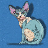 Sphynx Cat Illustration ilustración del vector