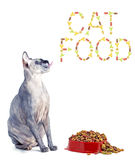 Sphynx cat and the inscription of the feed 'cat food' Royalty Free Stock Images
