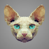 Sphynx cat low poly portrait Royalty Free Stock Photography