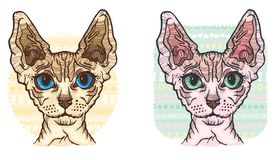 Sphynx Cat vector Illustration Stock Photography