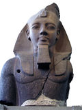 Sphynx egiziano Fotografia Stock