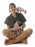 Sphynx Hairless Cat and woman. In front of white background Stock Photo