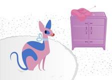 Sphynx katt Rolig glamorös katt med blåa ögon i en vardagsrum stock illustrationer