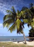 Spiagge Fotografia Stock