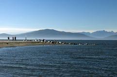 Spiagge di Kitsilano - di Vancouver Immagine Stock Libera da Diritti