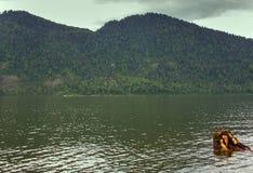 Spiagge a distanza del lago mountain belle e Fotografia Stock Libera da Diritti