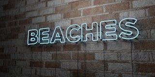 SPIAGGE - Insegna al neon d'ardore sulla parete del lavoro in pietra - 3D ha reso l'illustrazione di riserva libera della sovrani illustrazione di stock
