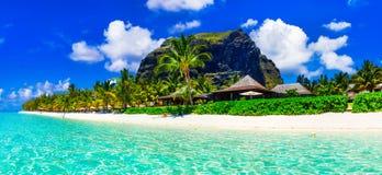 Spiagge sabbiose bianche splendide e mare azzurrato dell'isola delle Mauritius immagine stock