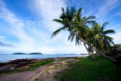 Spiaggia 3 della noce di cocco Immagine Stock Libera da Diritti