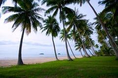 Spiaggia 4 della noce di cocco Immagine Stock