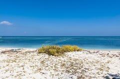 Spiaggia abbandonata Immagine Stock Libera da Diritti