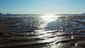 Spiaggia abbandonata Fotografie Stock