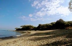 Spiaggia addormentata di mattina immagine stock