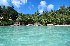 Spiaggia adorabile con acqua del turchese e palme verdi su un Trop Fotografia Stock Libera da Diritti