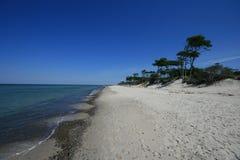 Spiaggia al Mar Baltico Immagini Stock Libere da Diritti