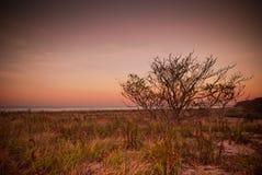 Spiaggia al tramonto nella caduta Fotografia Stock