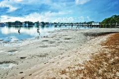 Spiaggia al yamba fotografia stock libera da diritti