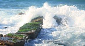 Spiaggia in Alessandria d'Egitto Immagine Stock