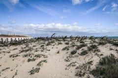 Spiaggia Algarve Portogallo di Barril Immagini Stock Libere da Diritti