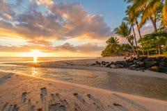 Spiaggia all'isola delle Mauritius Immagine Stock Libera da Diritti