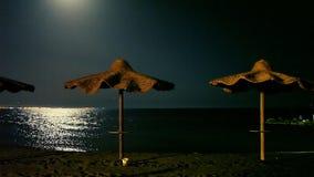 Spiaggia alla notte archivi video