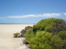 Spiaggia australiana Fotografia Stock