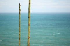 Spiaggia, bella spiaggia qui fotografie stock