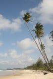 Spiaggia in Bintan Fotografie Stock