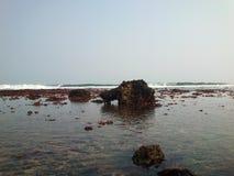 Spiaggia Blitar di Gondo Mayit immagine stock