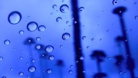 Spiaggia blu Encinitas California degli SWAMIS delle gocce di pioggia 2 stock footage