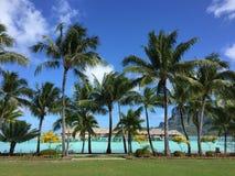 Spiaggia a Bora Bora Fotografia Stock Libera da Diritti