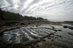 Spiaggia botanica, porto Renfrew Fotografia Stock Libera da Diritti