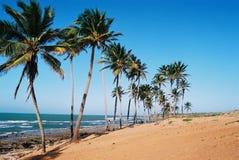 Spiaggia brasiliana tropicale Fotografie Stock Libere da Diritti