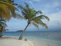 Spiaggia caraibica immagini stock libere da diritti