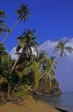 Spiaggia caraibica Fotografia Stock