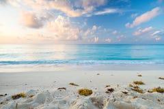 Spiaggia caraibica ad alba Fotografia Stock Libera da Diritti