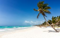 Spiaggia caraibica di paradiso in Tulum Fotografia Stock Libera da Diritti