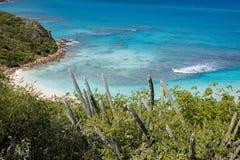 Spiaggia caraibica in Isole Vergini Fotografie Stock Libere da Diritti