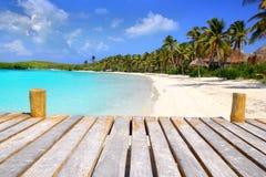 Spiaggia caraibica Messico del treesl della palma dell'isola di Contoy Fotografie Stock