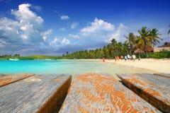Spiaggia caraibica Messico del treesl della palma dell'isola di Contoy Fotografia Stock Libera da Diritti
