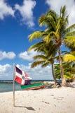 Spiaggia caraibica nella Repubblica dominicana Immagini Stock