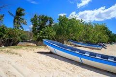 Spiaggia caraibica in piccolo paesino di pescatori tropicale Acque libere Rio de Janeiro, Copacabana Albero nel campo Cieli blu R immagine stock libera da diritti