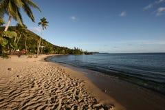 Spiaggia carribean di paradiso Fotografia Stock