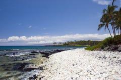 Spiaggia celestiale dell'Hawai Fotografie Stock
